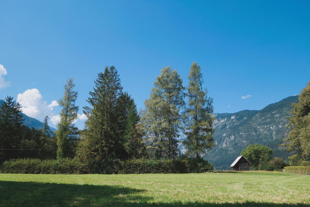 🇸🇮【斯洛維尼亞】住在仙境裡,波茵湖住宿:Hotel Stare Bohinj, Slovenia(內有影片)